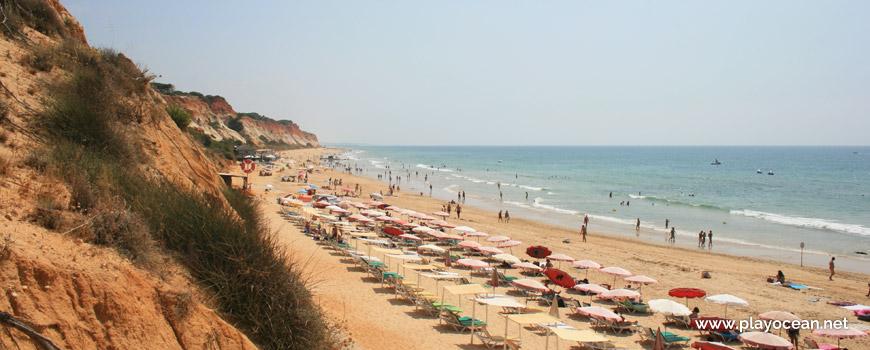 Concessão Oeste na Praia das Belharucas