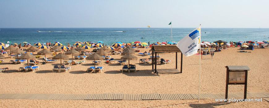 Aluguer de camas na Praia do Peneco