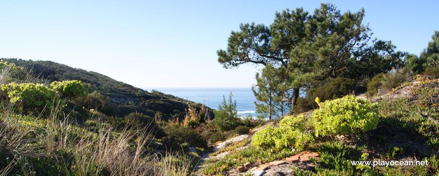 Trilho para a Praia das Águas Luxuosas
