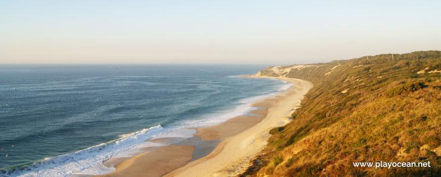 Panorâmica da Praia da Polvoeira