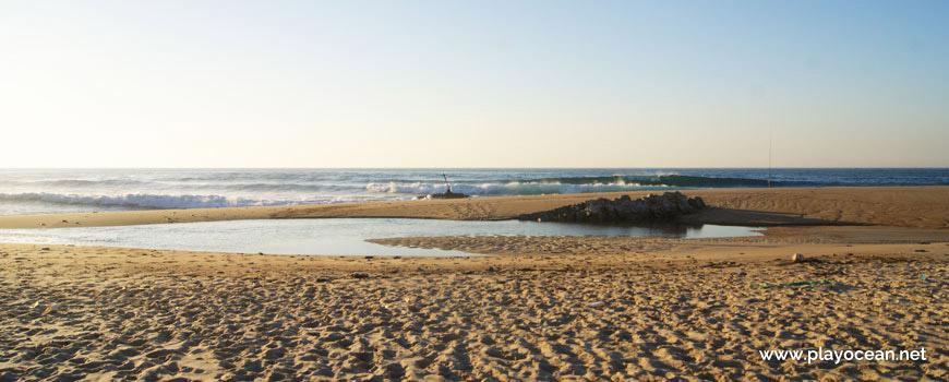 Poça na Praia da Polvoeira