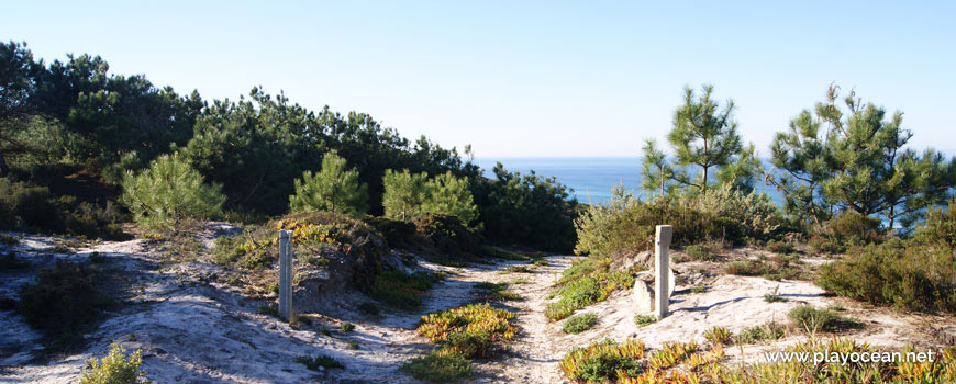 Descida à Praia de Vale Pardo