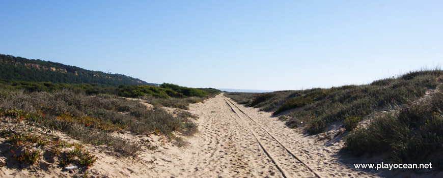Railway road of the minitrain