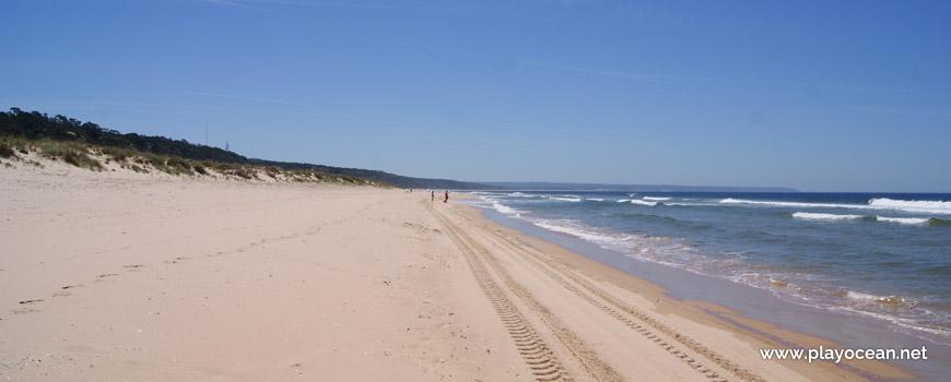Sul da Praia do Dezanove