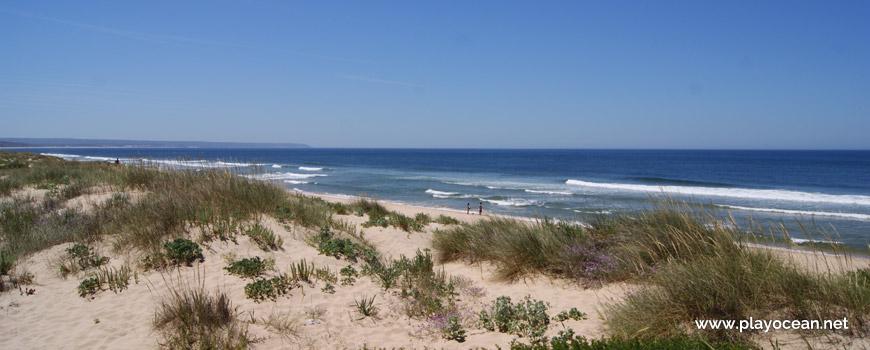 Praia do Dezanove