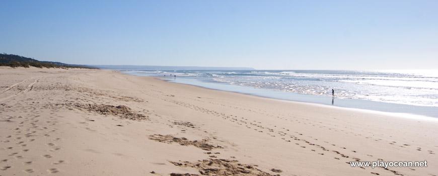 Sul da Praia do Infante