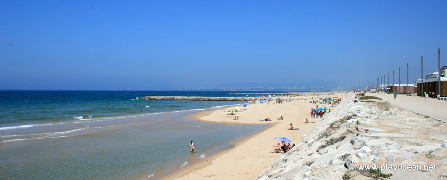 Nova Praia paredão