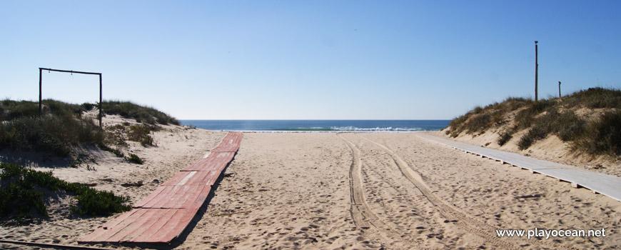 Passadiços da Praia da Nova Vaga