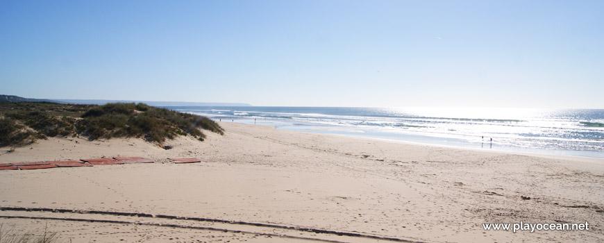 Areal da Praia da Nova Vaga