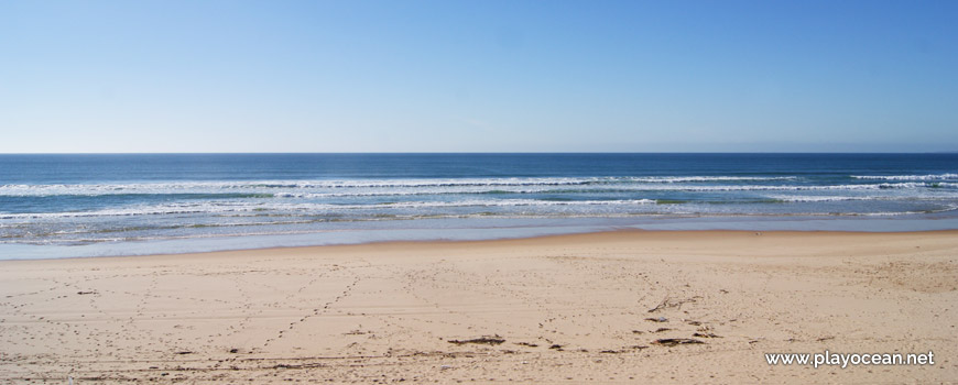 Beira-mar, Praia da Nova Vaga