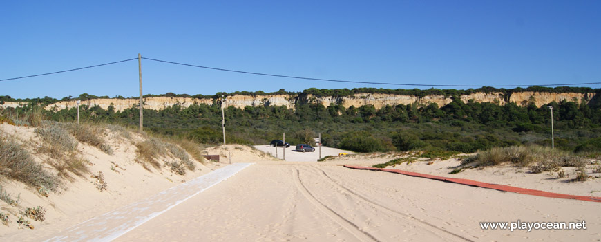 Arriba Fóssil, Praia da Nova Vaga
