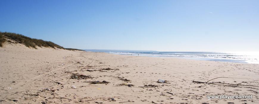 Sul da Praia da Nova Vaga