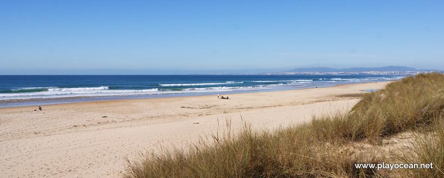 Areal da Praia da Rainha