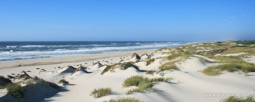 Praia das Dunas de São Jacinto Beach