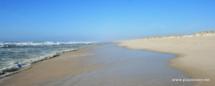 North of Praia das Dunas de São Jacinto Beach