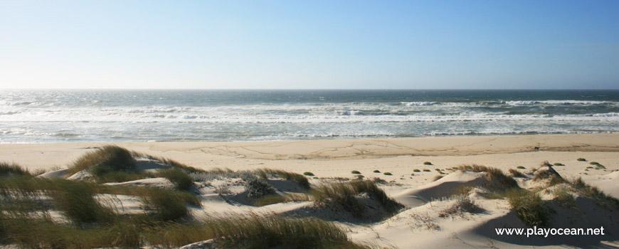 Sea of Praia das Dunas de São Jacinto Beach