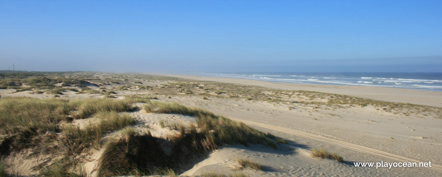 Praia de São Jacinto Beach