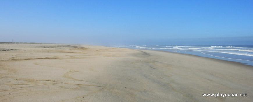 South of Praia de São Jacinto Beach
