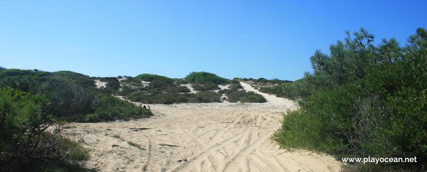 Trilhos para a Praia dos Almadoiros