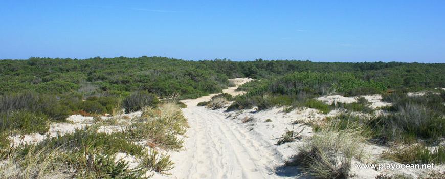 Caminho para a Praia dos Almadoiros