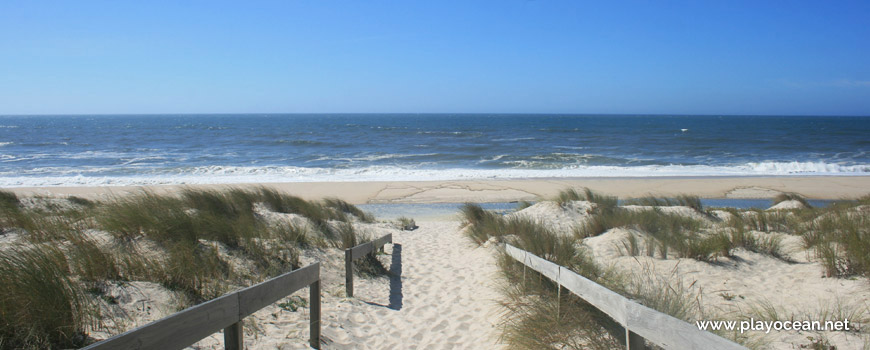 Acesso à Praia do Palheirão
