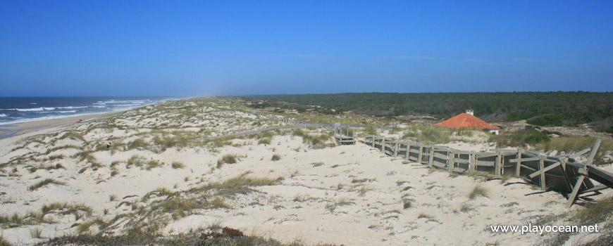 Dune system of Praia do Palheirão Beach