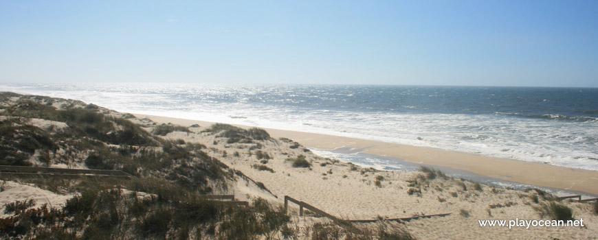 Praia do Palheirão Beach