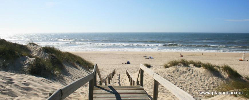 Acesso à Praia da Tocha