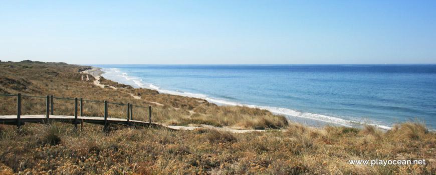 Dunes at Praia de Antas Beach