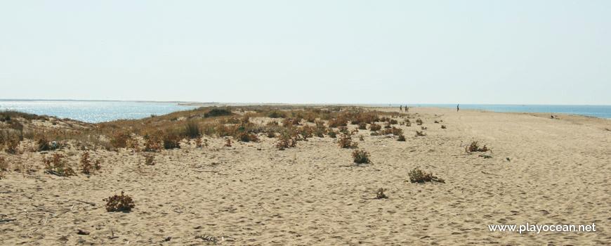 Dunas na Praia de Faro (Este)