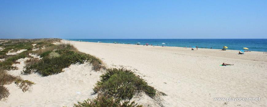 Praia da Ilha do Farol (Mar), a partir das dunas