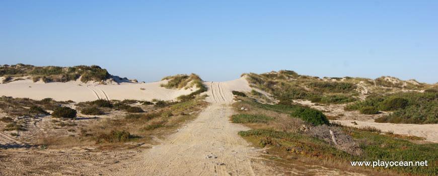 Path, Praia da Cova Gala (South) Beach