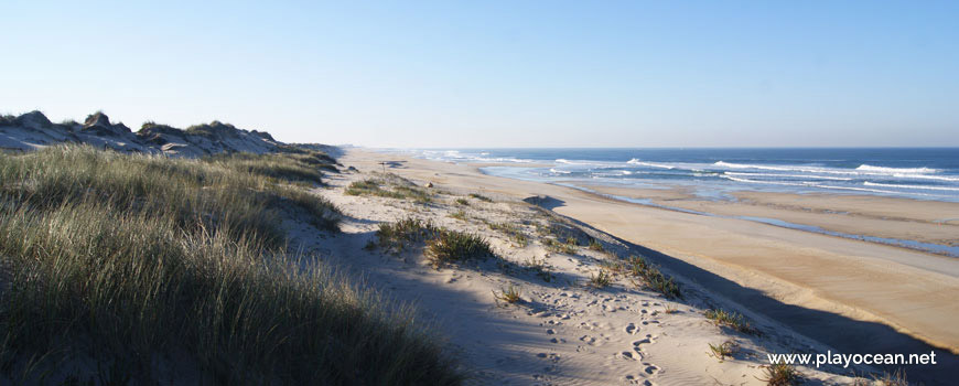 Sul na Praia da Cova Gala (Sul)
