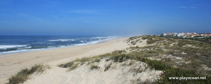 Norte da Praia da Murtinheira