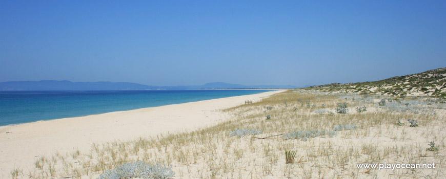 Norte da Praia da Malha da Costa