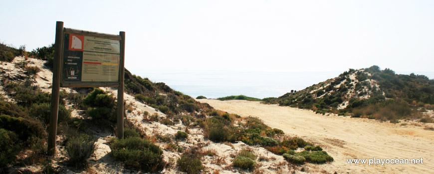 Trilho dunar até à Praia do Pinheirinho