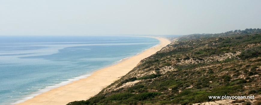 Norte Praia do Pinheirinho