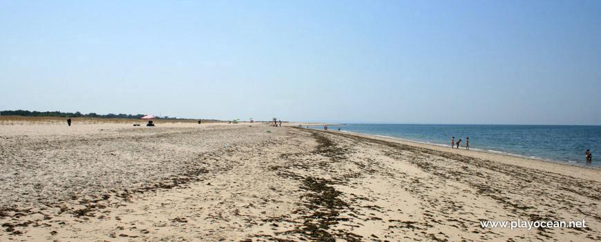 Praia da Questa Beach