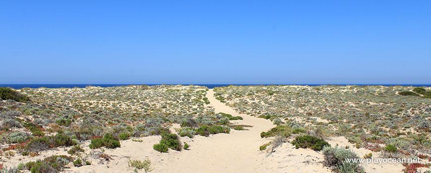 Trilho para a Praia da Sesmaria