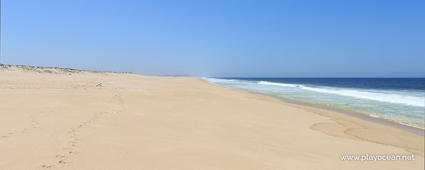 Sul na Praia da Sesmaria