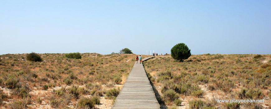 Walkway at Praia de Tróia-Bico das Lulas Beach