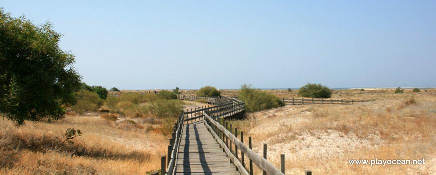 Praia de Tróia (Sea) pedestrian access