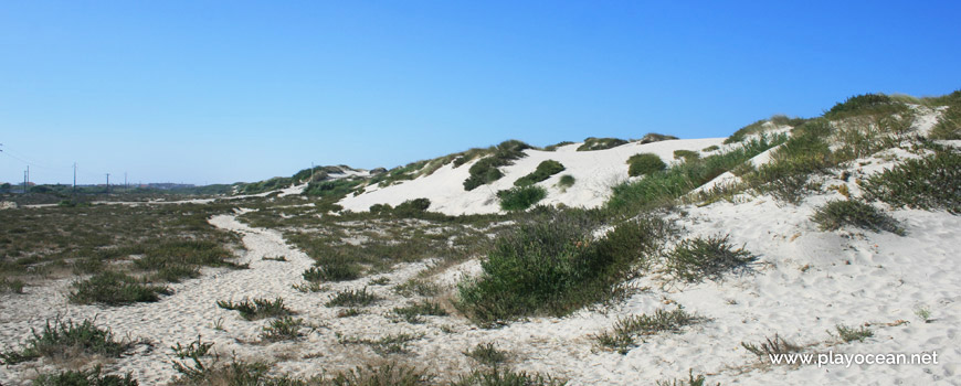 Dunes at Praia da Barra (South) Beach
