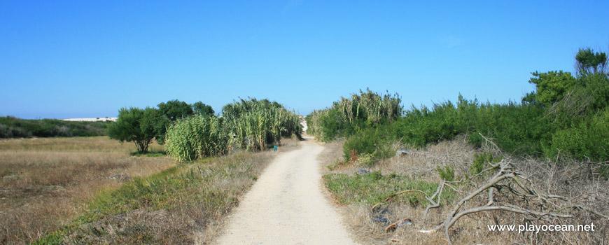 Caminho para a Praia da Costinha
