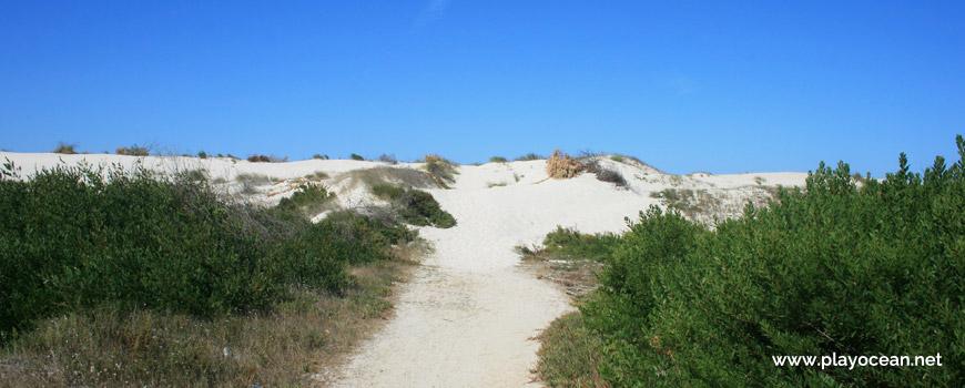 Entrada da Praia da Costinha