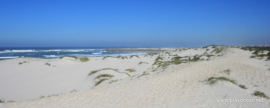 Dunes of Praia da Costinha Beach