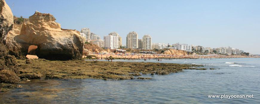 Este na Praia do Vale do Olival