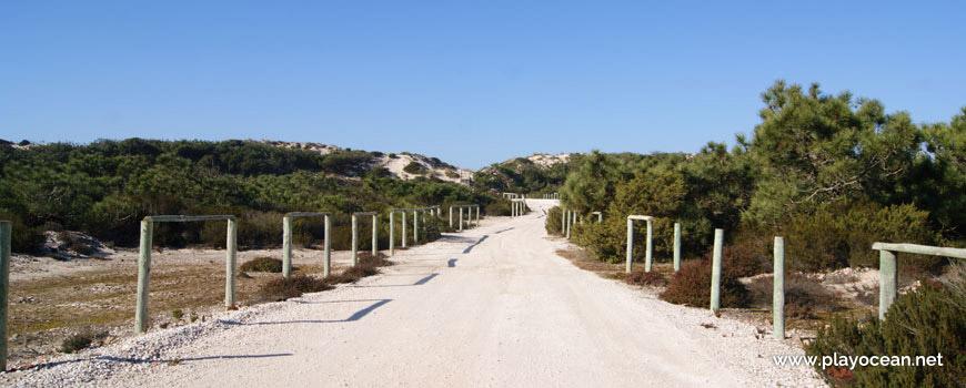 Caminho para a Praia do Vigão