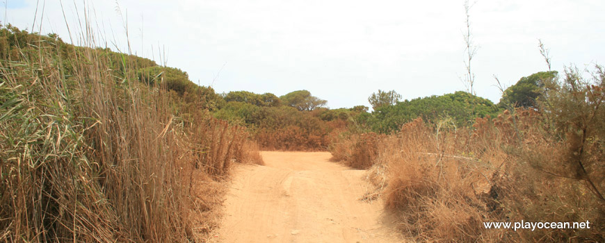 Access to Praia do Trafal Beach