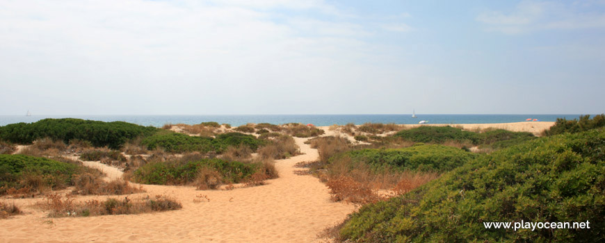 Trail at Praia do Trafal Beach